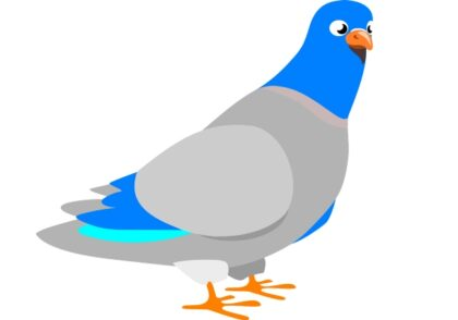 توضیح HTTPS به وسیله کبوترهای نامه بر